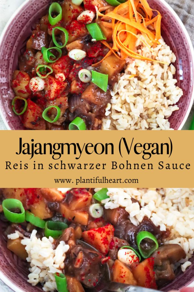 Jajangmyeon Reis in schwarzer Bohnen Sauce